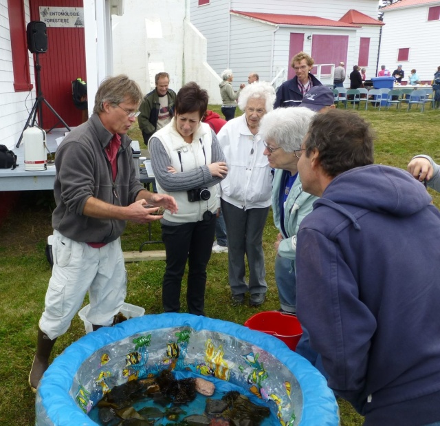 HLSL-Newsletter-Autumn 2013-p1-marine life demo